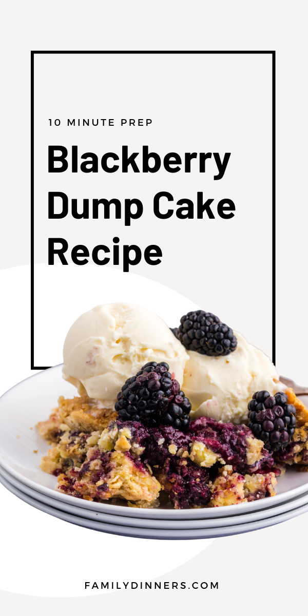 image of vanilla ice cream scoops with blackberries on top of blackberry dump cake