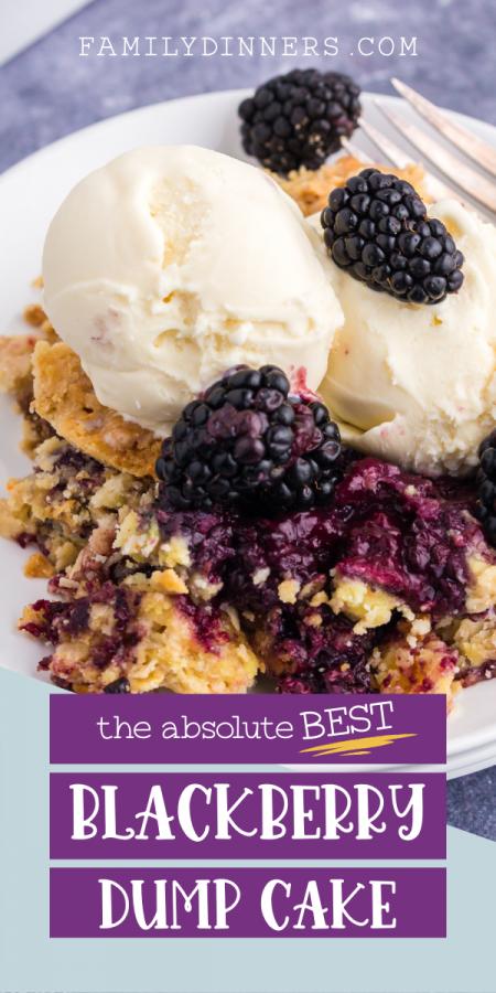 text: blackberry dump cake recipe - 10 minute prep - image of vanilla ice cream scoops with blackberries on top of blackberry dump cake
